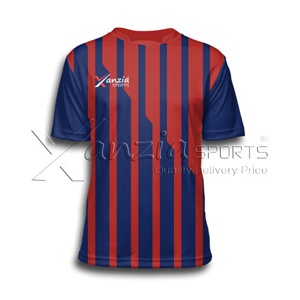 Albion Soccer Jersey